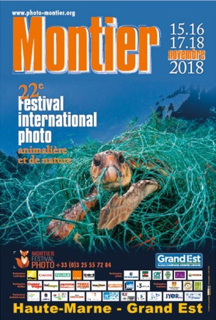 Séjour ornitho au lac du Der et Festival de Montier